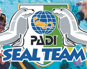 Padi sealteam voor kids